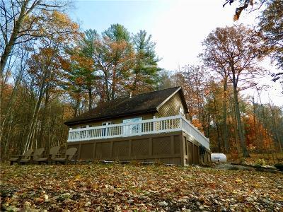 Keuka Park NY Single Family Home A-Active: $449,000