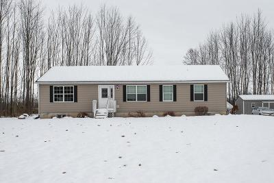 Canandaigua, Canandaigua-city, Canandaigua-town Single Family Home A-Active: 4188 Straw Road