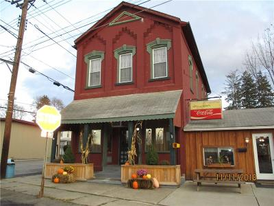 Arkport NY Commercial A-Active: $139,000