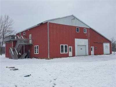 Sodus NY Commercial A-Active: $242,000