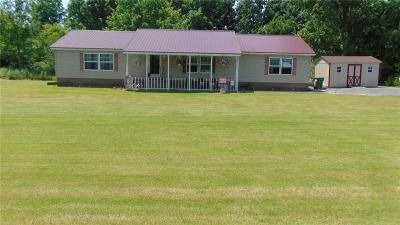 Waterloo, Geneva-city, Seneca Falls, Geneva-town Single Family Home U-Under Contract: 550 Gravel Road