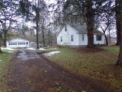 Waterloo, Geneva-city, Seneca Falls, Geneva-town Single Family Home A-Active: 2497 Brewer Road