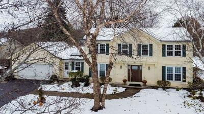 Penfield Single Family Home A-Active: 167 Hillrise Drive