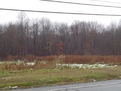 Residential Lots & Land A-Active: 00 State Route 14 Street
