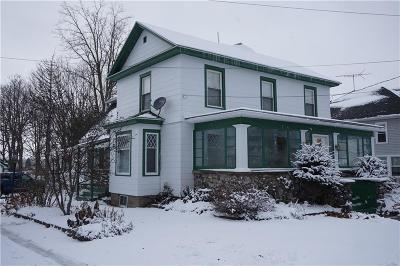 Genesee County Single Family Home A-Active: 49 Lake Street