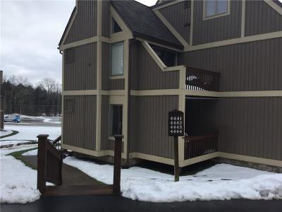 Clymer, Findley Lake Condo/Townhouse A-Active: 4441 Old Road