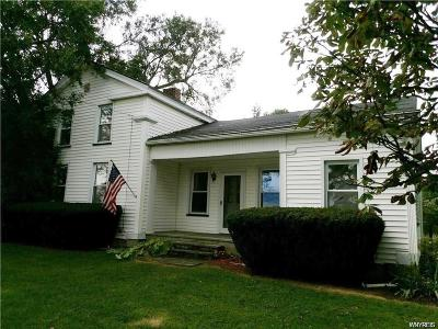Genesee County Single Family Home A-Active: 5311 Ford Road
