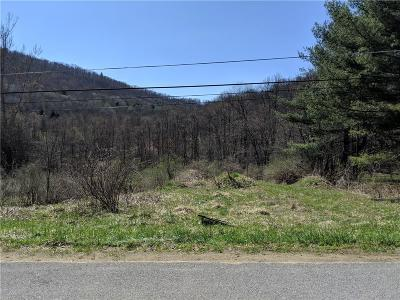 Residential Lots & Land A-Active: 1517 Lillibridge Road