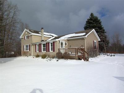 Genesee County Single Family Home A-Active: 9977 Seward Road Road