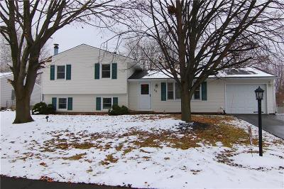 Monroe County Single Family Home A-Active: 20 Sean Lane