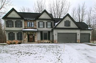 Monroe County Single Family Home A-Active: 1243 Walker Lake Ontario Road