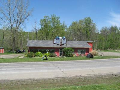 Hammondsport NY Commercial A-Active: $259,000
