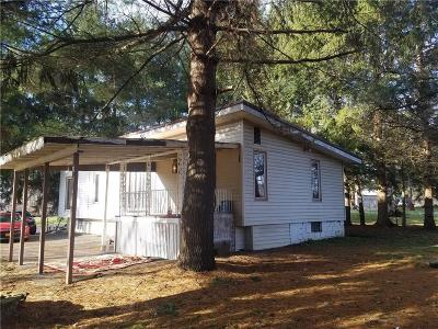Allegany Single Family Home A-Active: 3924 Nys Route 417