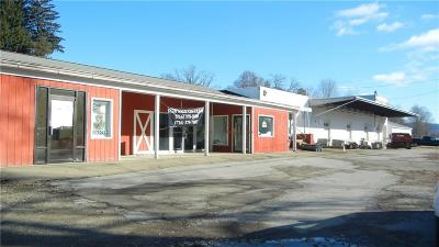 Allegany NY Commercial A-Active: $198,000