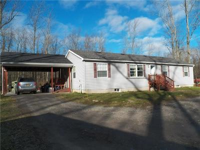Orleans County Single Family Home A-Active: 10840 Palmer Road