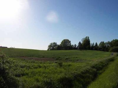 Residential Lots & Land For Sale: Pittsford Mendon Road