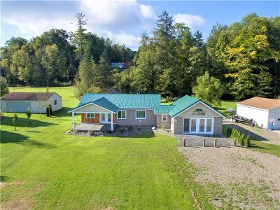 Chautauqua County Single Family Home A-Active: 5525 Wells Bay Road