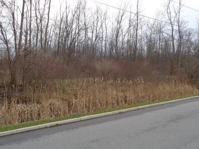 Hamlin Residential Lots & Land A-Active: 20 Victor Lane