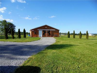 Canandaigua, Canandaigua-city, Canandaigua-town Residential Lots & Land A-Active: 4117 County Road 18