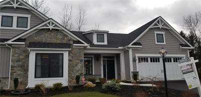 Webster Condo/Townhouse A-Active: 7 River Birch Lane #LOT #23