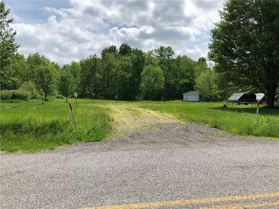 Chautauqua County Residential Lots & Land A-Active: 4299 Maple Grove Road