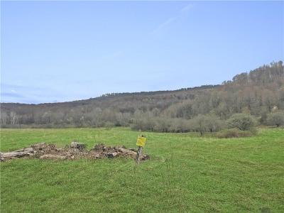 Little Valley Residential Lots & Land A-Active: Liebler Road