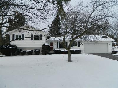 Penfield Single Family Home A-Active: 1913 Dublin Road