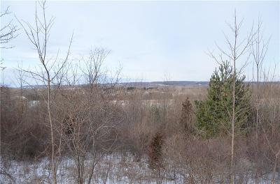 Residential Lots & Land A-Active: 4ab S. Wayneport Road
