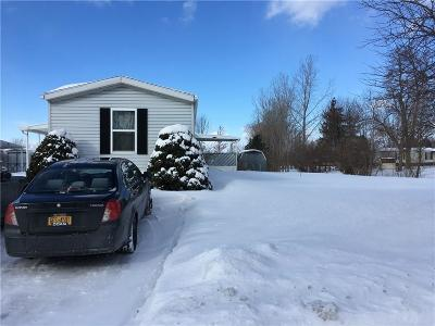 Orleans County Single Family Home A-Active: 546 Rockview Drive