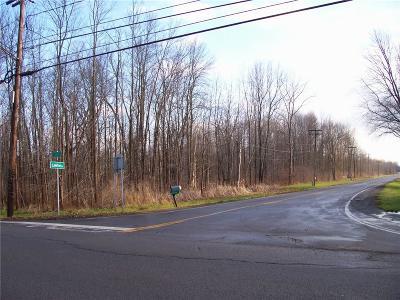 Monroe County Residential Lots & Land A-Active: Lake/Lawton Road