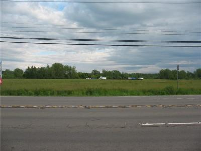Silver Creek Residential Lots & Land A-Active: 0000 Rts. 5 & 20