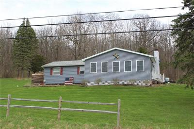 Dansville NY Single Family Home A-Active: $161,000