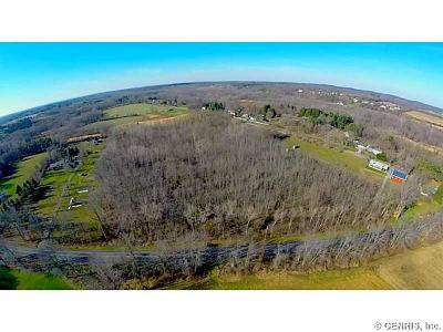 Residential Lots & Land A-Active: 1143 West Bloomfield Road