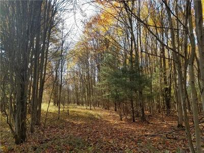 Chautauqua County Residential Lots & Land A-Active: Lot 2-A Howard Avenue