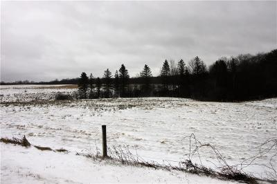 Chautauqua County Residential Lots & Land A-Active: Harris Hill Road