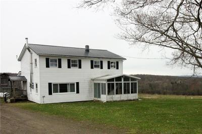Falconer NY Single Family Home A-Active: $285,000