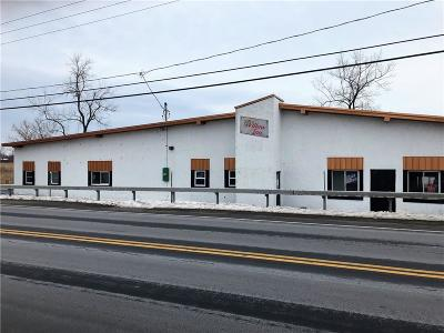 Monroe County Commercial A-Active: 428 Manitou Road