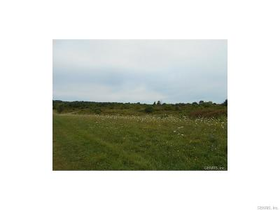 Ontario County Residential Lots & Land A-Active: 2042 Brace Road
