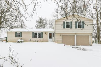 Rochester Single Family Home A-Active: 11 Revere Drive
