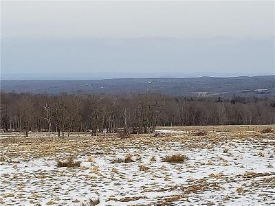 Chautauqua County Residential Lots & Land U-Under Contract: Center Road East