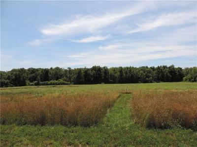 Hamlin Residential Lots & Land A-Active: 64 Country Creek Lane