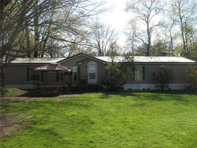 Single Family Home For Sale: 9740 Center Road