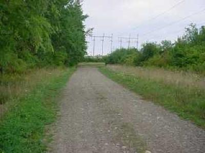 Chautauqua County, Cattaraugus County Residential Lots & Land A-Active: Clinton Street