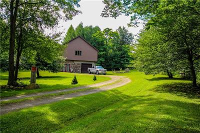 Chautauqua County Residential Lots & Land A-Active: 9777 Hazen Road