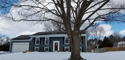 Pittsford Single Family Home U-Under Contract: 9 Vantage Drive