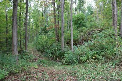 Chautauqua County Residential Lots & Land A-Active: 3825 Falconer Kimball Stand Road