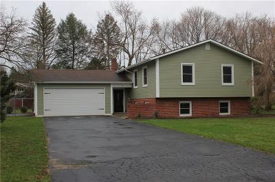 Pittsford Single Family Home A-Active: 7 Musket Lane