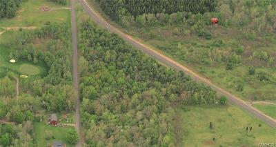 Orleans County Residential Lots & Land A-Active: Route 31