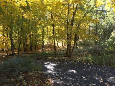 Pittsford Residential Lots & Land A-Active: 5 Morningside Park #PVT