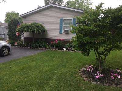 Orleans County Single Family Home A-Active: 272 Sunset Drive